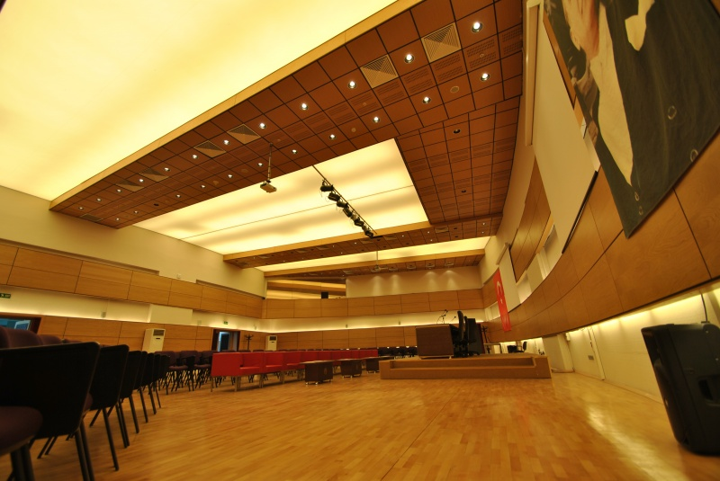 Conference Hall Ceilings
